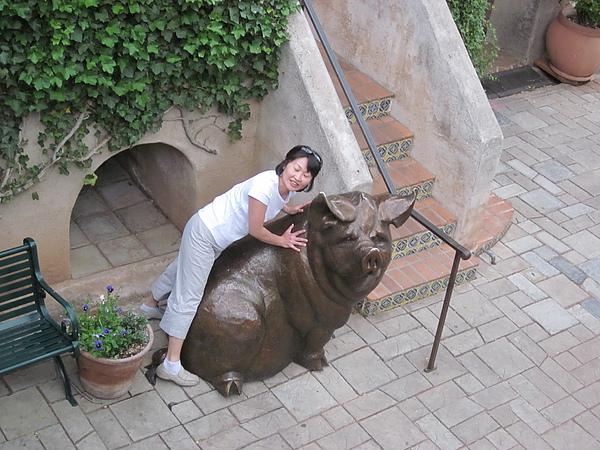 Janice喜歡豬
