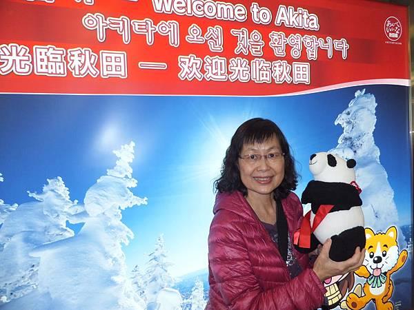 帶漸凍人看世界的貓熊襪娃到了秋田機場