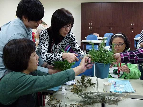 為了製作乾洗手液,大家分別摘 剪自己屬意的芳香植物。.JPG