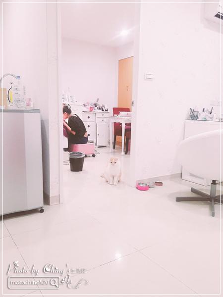 誰說短指甲不能做光療 超可愛熊本熊凝膠美甲在K Nail studio。噗咪美甲設計師 (4).jpg