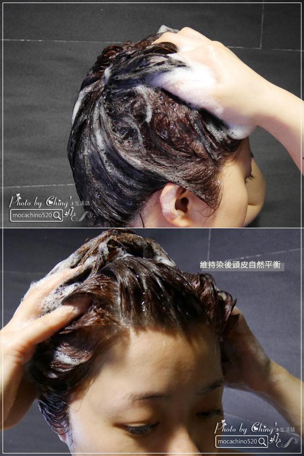 還我一頭健康秀髮,染後修護洗髮推薦。Oma歐瑪 金盞花%26;牛蒡護色洗髮乳、燕麥%26;蕁麻修復洗髮乳 (6).jpg