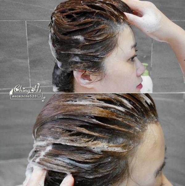 染後頭髮的保養,拯救乾髮心得分享,Nature's Gate 經典茉莉梔子花酵素亮澤洗髮精,染髮用洗髮推薦 (10).jpg
