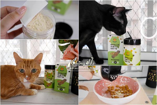 寵物保養,貓用營養品推薦,LOVELAPET愛貝寵 納豆菌酵素粉,挑嘴貓提振食慾的法寶 (1).jpg