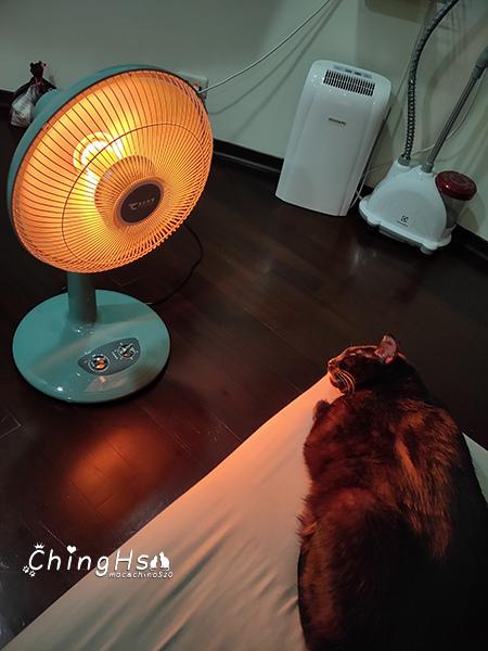 寵物居家照護分享自製寵物氧氣箱 (23).jpg