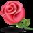 10-flower-rose