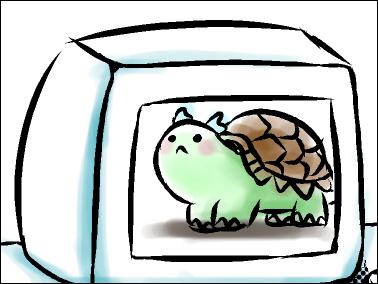 小烏龜.jpg