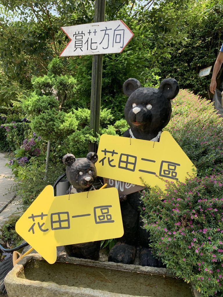 大梯田花卉生態農場|陽明山竹子湖繡球花季04.jpg
