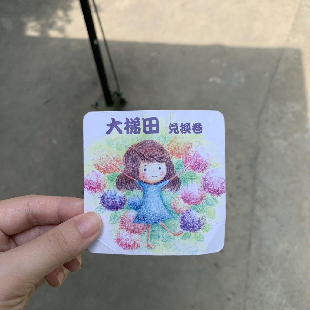 大梯田花卉生態農場|陽明山竹子湖繡球花季05.jpg