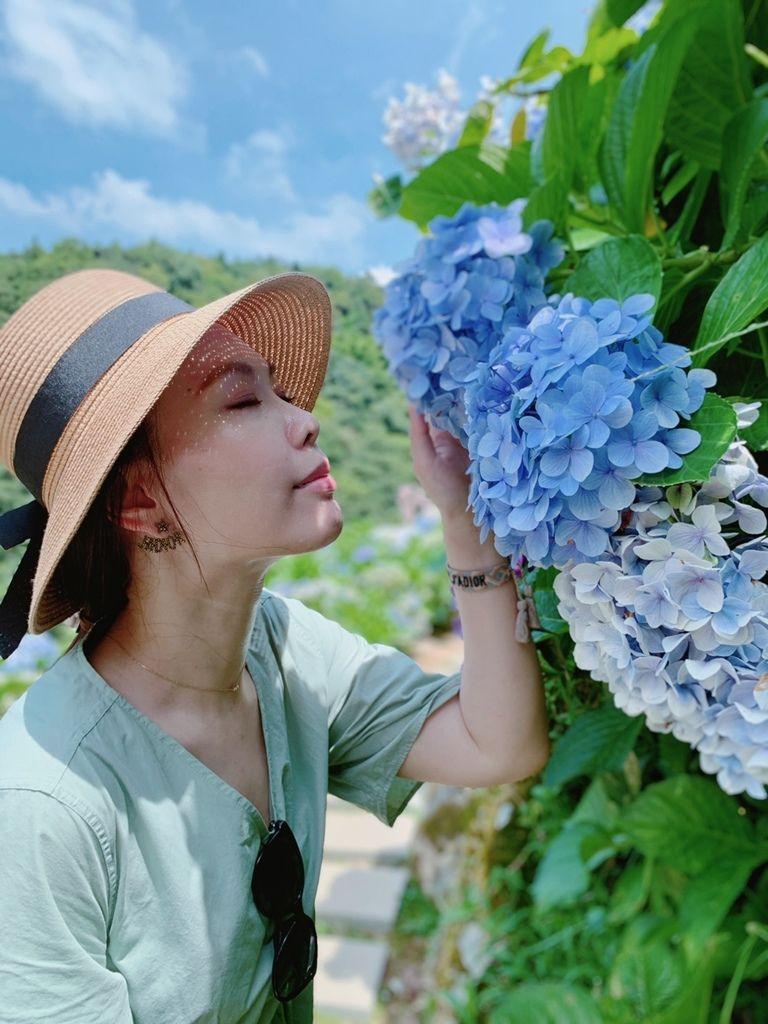 大梯田花卉生態農場|陽明山竹子湖|繡球花22.jpg