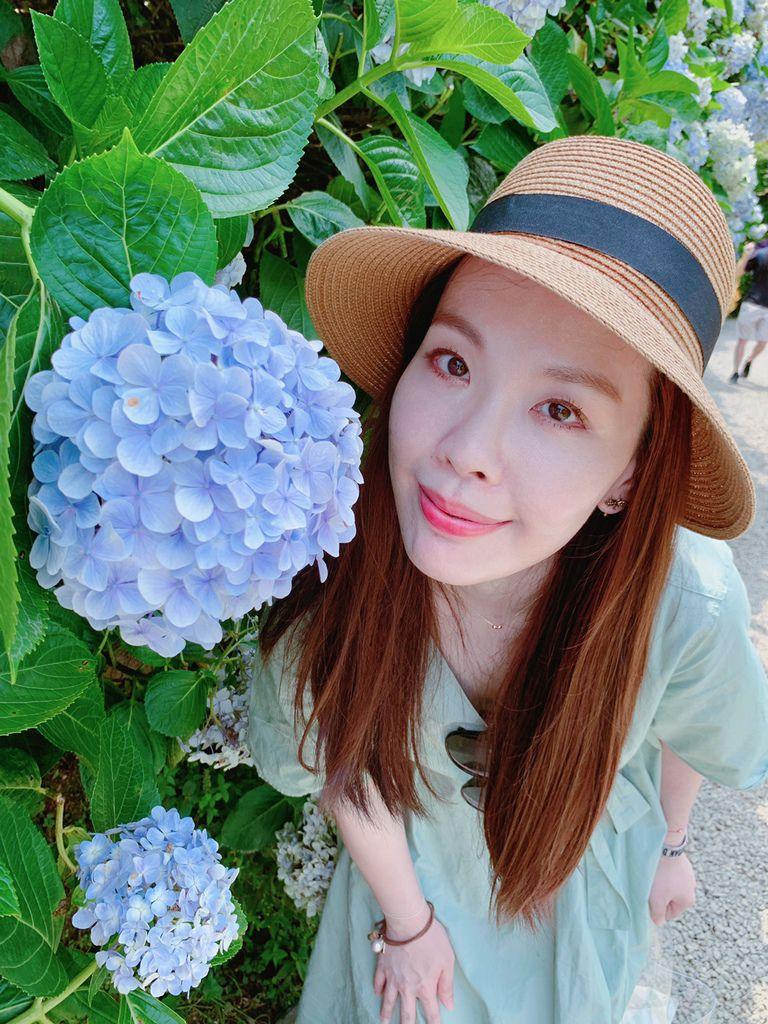 大梯田花卉生態農場|陽明山竹子湖|繡球花15.jpg