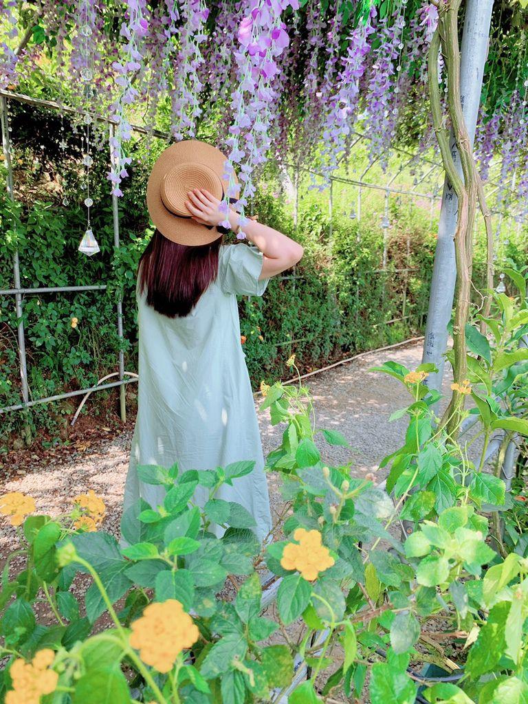 大梯田花卉生態農場|陽明山竹子湖|繡球花04.jpg