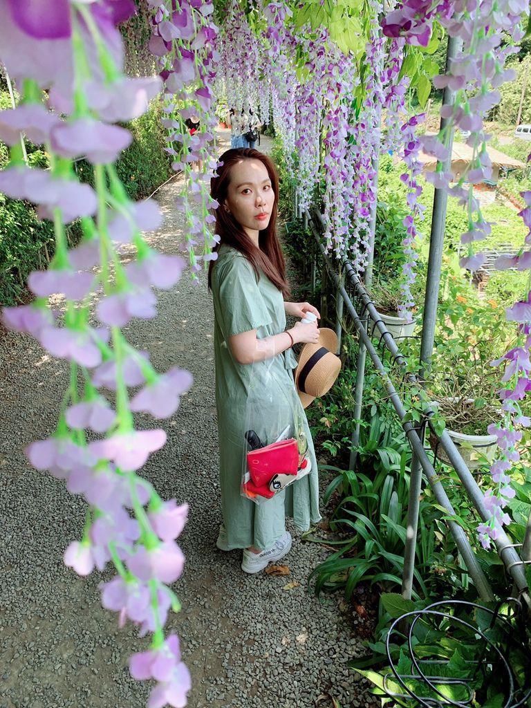大梯田花卉生態農場|陽明山竹子湖|紫藤花07.jpg