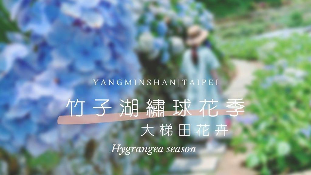 繡球花cover.jpg