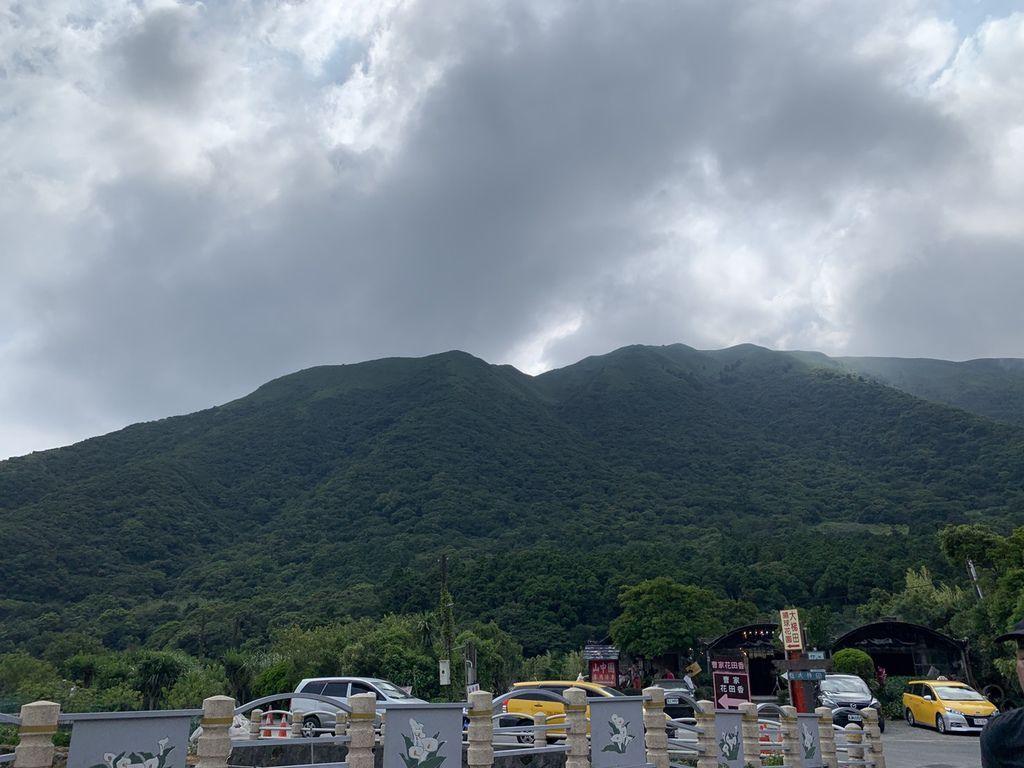 大梯田花卉生態農場|陽明山竹子湖一日遊.jpg