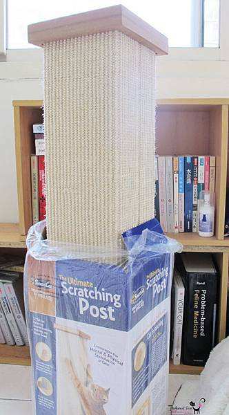 Ultimate Scratching Post1.jpg