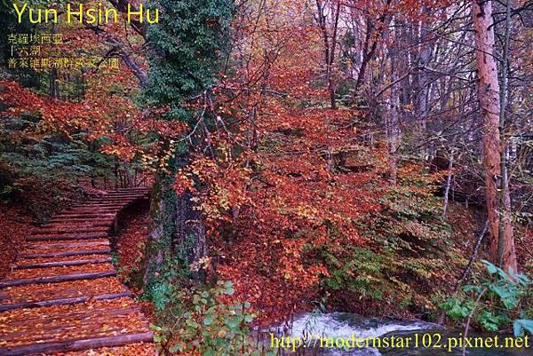 1031014-16湖DSC02892 (640x427)
