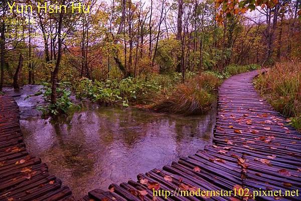 1031014-16湖DSC02813 (640x427)