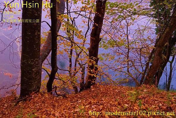 1031014-16湖DSC02744 (640x427)