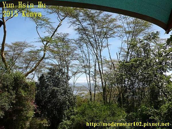 10408223Lake NakuruL1550244 (640x480)