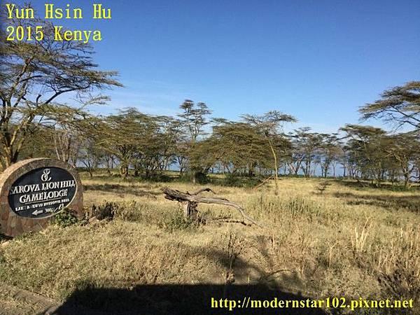 10408223Lake NakuruIMG_1070 (640x480)