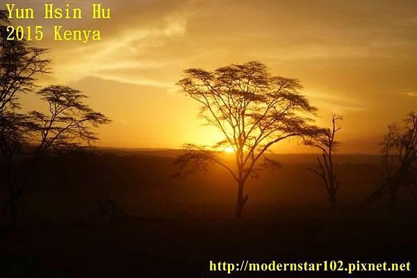 10408223Lake NakuruDSC02785 (640x427)