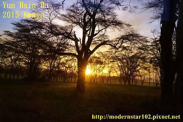 10408223Lake NakuruDSC02762 (640x427)