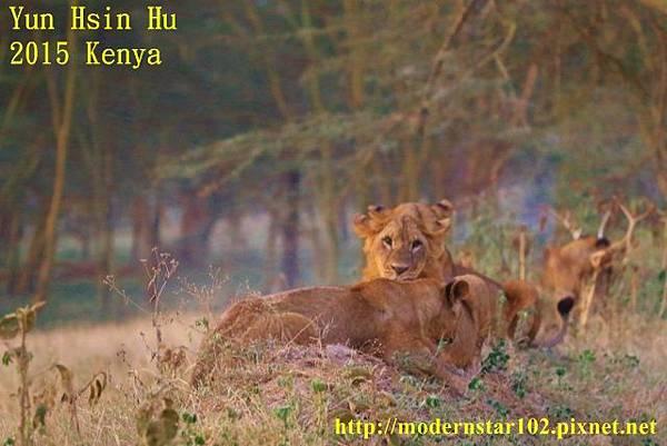 10408223Lake Nakuru894A2610 (640x427)