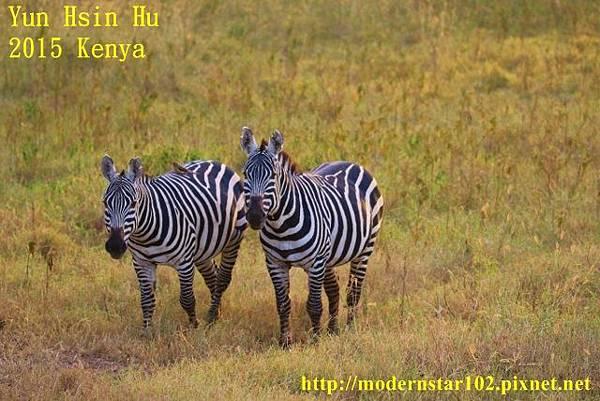 10408223Lake Nakuru894A2453 (640x427)