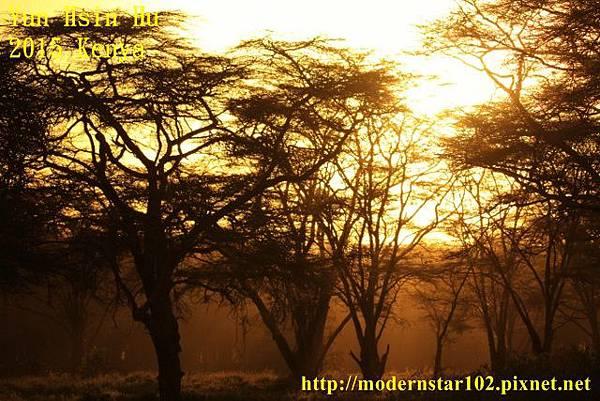 10408223Lake Nakuru894A2542 (640x427)
