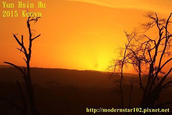 10408223Lake Nakuru894A2590 (640x427)