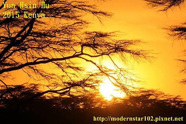 10408223Lake Nakuru894A2570 (640x427)