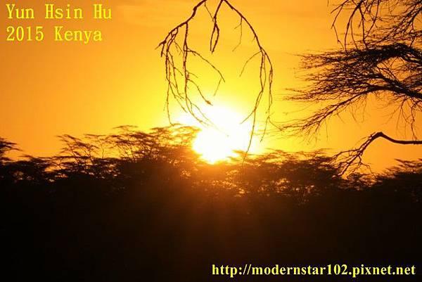 10408223Lake Nakuru894A2565 (640x427)