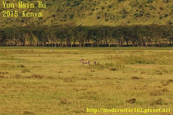 10408223Lake Nakuru894A2111 (640x427)