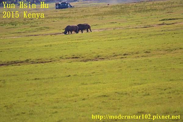 10408223Lake Nakuru894A2068 (640x427)