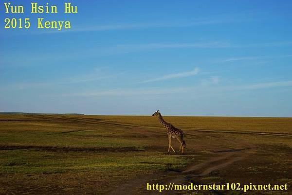 10408224Mara Leisure CampDSC02941 (640x427)