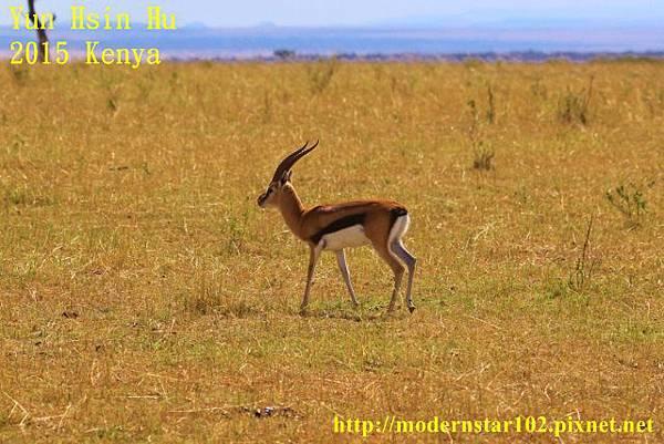 10408224Mara Leisure Camp894A2751 (640x427)