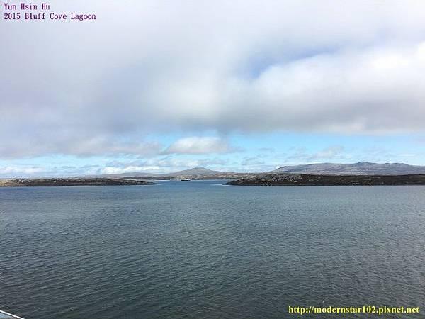 1041106Bluff Cove LagoonIMG_1076 (640x480).jpg