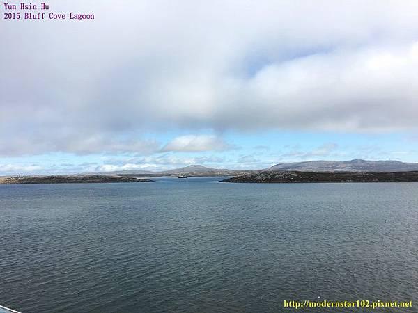 1041106Bluff Cove LagoonIMG_1077 (640x480).jpg