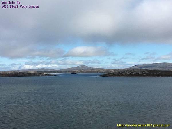 1041106Bluff Cove LagoonIMG_1078 (640x480).jpg