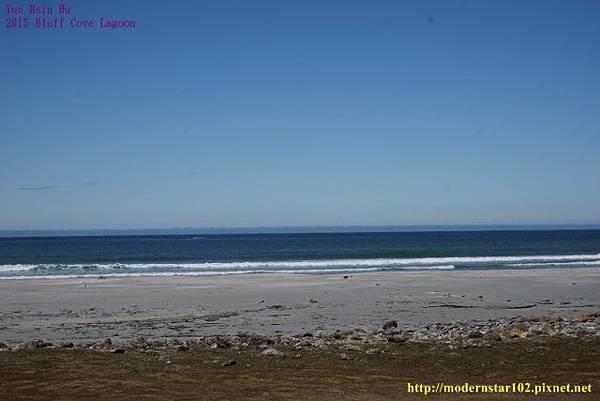 1041106Bluff Cove LagoonDSC05797 (640x427).jpg