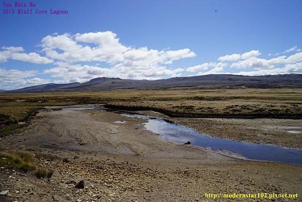 1041106Bluff Cove LagoonDSC05804 (640x427).jpg