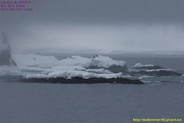 1041113Half Moon Island894A4681 (640x427).jpg