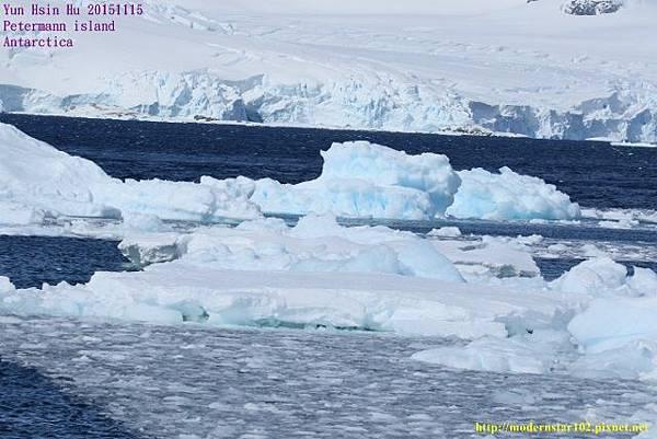 1041115Petermann island894A0030 (640x427).jpg