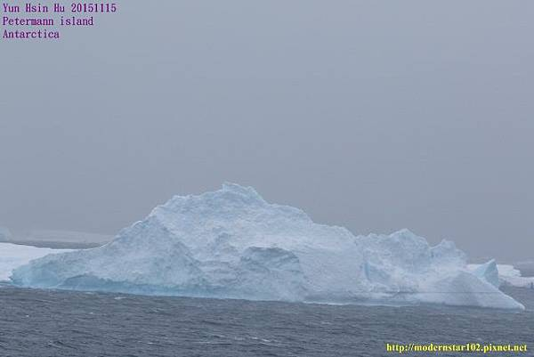 1041115Petermann island894A0191 (640x427).jpg