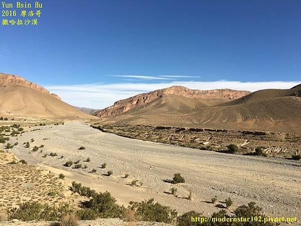 1050409撒哈拉沙漠IMG_9974 (640x480).jpg