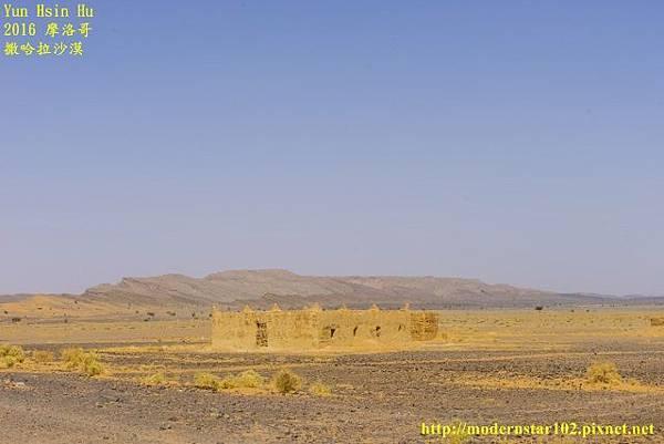 1050409撒哈拉沙漠DSC00449-1 (640x427).jpg