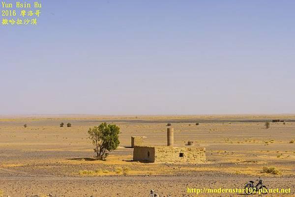 1050409撒哈拉沙漠DSC00446-1 (640x427).jpg