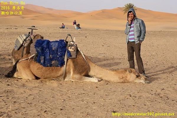 1050409撒哈拉沙漠894A7263 (640x427).jpg