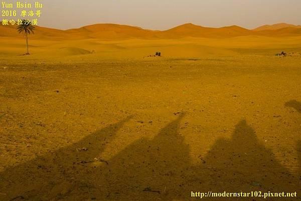1050409撒哈拉沙漠894A7283-1 (640x427).jpg