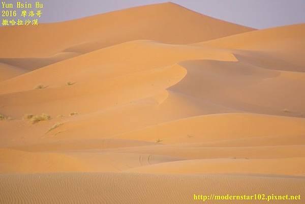 1050409撒哈拉沙漠894A7287-1-1 (640x427).jpg